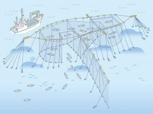 小型定置網漁