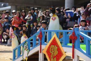 写真⑨王様パレード